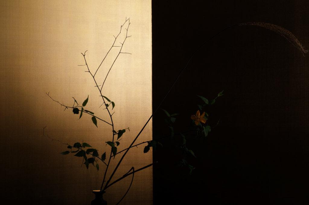 Keiichiro Muramatsu. Série 1