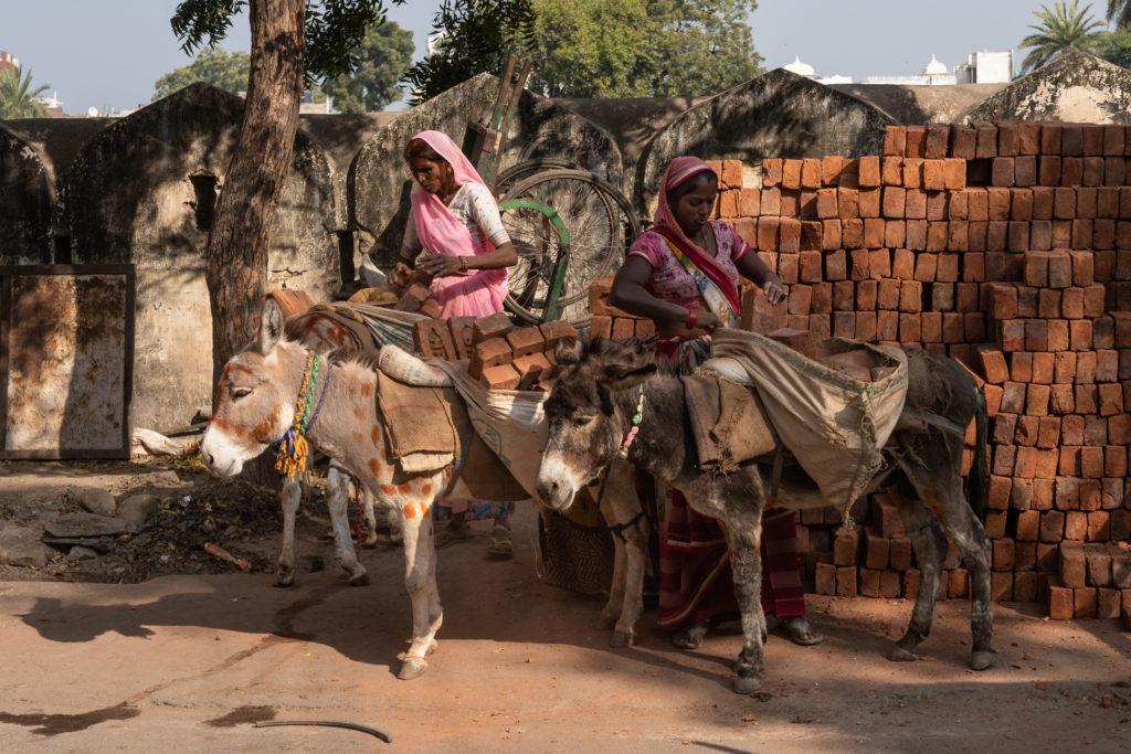 Le Rajasthan aux mille visages – Lucie Bressy